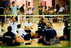 volley colour