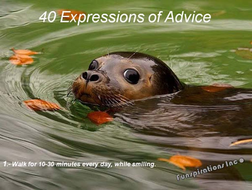 40 Expressions of Advice :- Walk for 10-30 minutes everyday, while smiling.