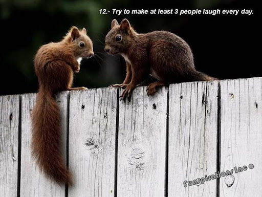 Try to make at least three people laugh every day