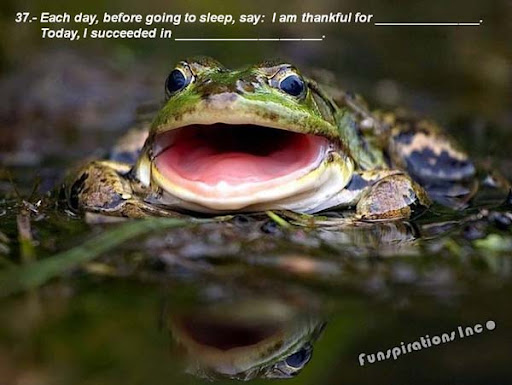 Each day, before going to sleep, say; I am thankful for ...... Today, I succeeded in .....