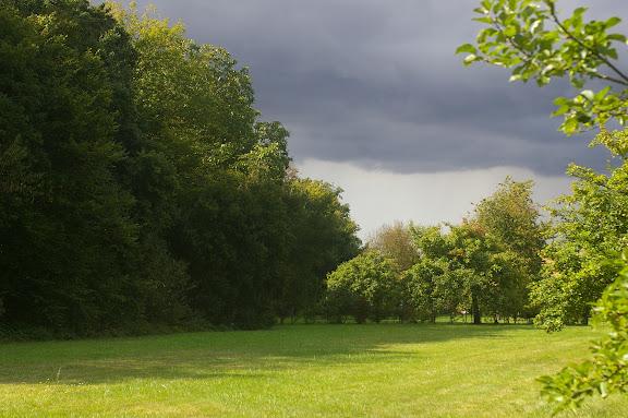 Le jardin aux Hautes-Lisières, 12 septembre 2008.