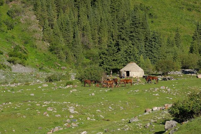 Yourte kyrgyze, Kyzyl Aksuu, Kungej Alatau, Kyrgyzistan (5 juillet 2006). Photo : J.-M. Gayman