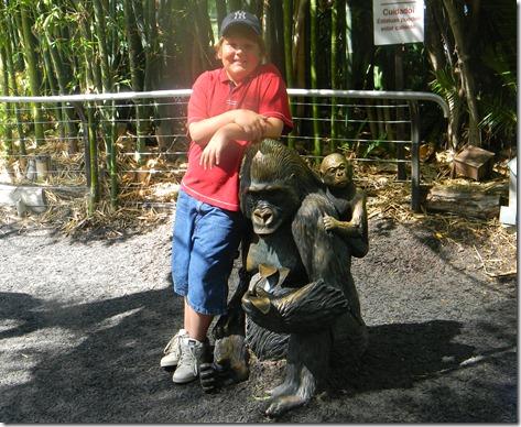 zoo 256