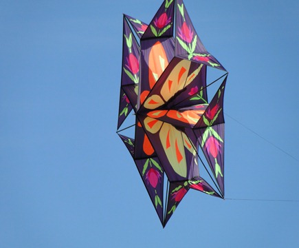 kite 020