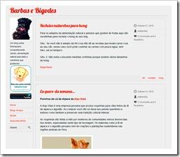 O blog!