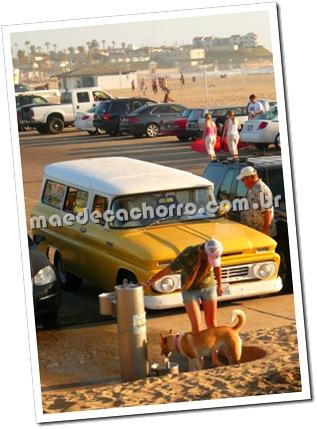 Bebedouro na entrada de Dog Beach com a Ocean Beach ao fundo.