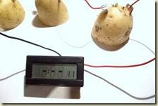 بطارية من البطاطس