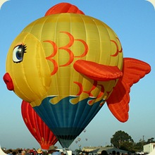 hot_air_balloon_27sfw
