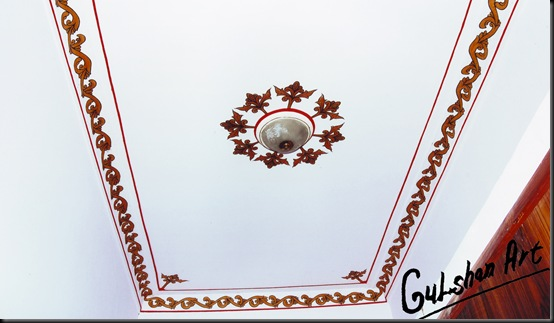 gulshan art padmini hotel (8)