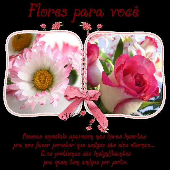 flores4.png