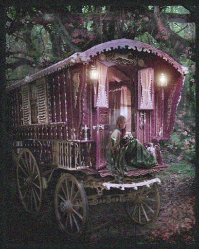 Gypsy Wisdom Cover