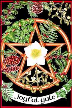 The Herbs And Plants Of Yule Cover
