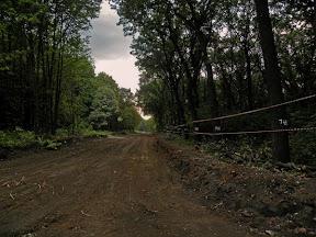 Пронумеровано 900 деревьев