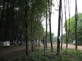 (c) Natalia: слева лагерь, вдалеке строительная техника