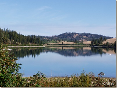 Allyene Lake #5 lt.sum