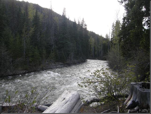 Spring Trip 2010 1905