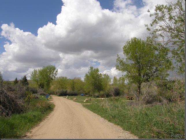 Spring Trip 2010 1785