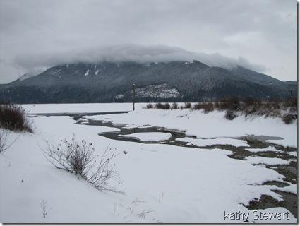 Snowy expanse