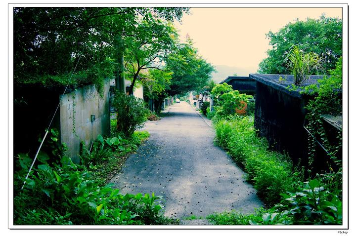 【請評圖】今日隨拍~2010/10/12