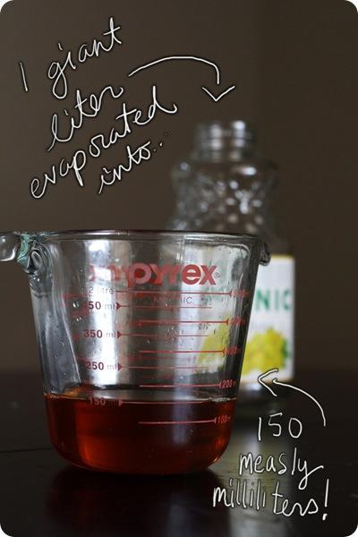 grapejuicetart04