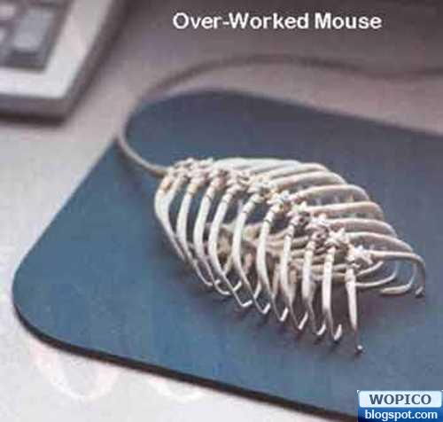 Skeleton Mouse