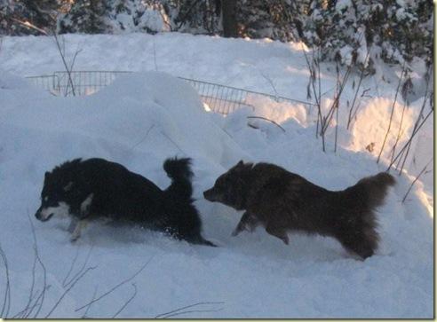 08 vinter Emma og Adina 1