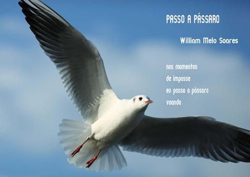 WMS_Passo a Passaro