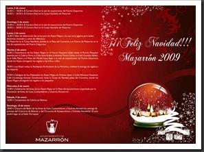 Programa Navidad 2009_1