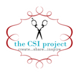 thecsiproject_com-logo-150