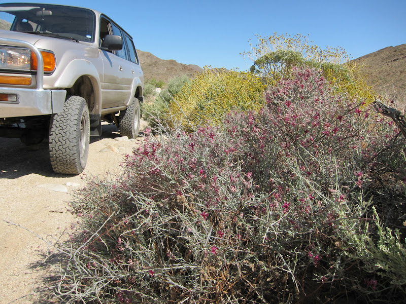 Lumbering up Carrizo Gorge in our diesel Land Cruiser