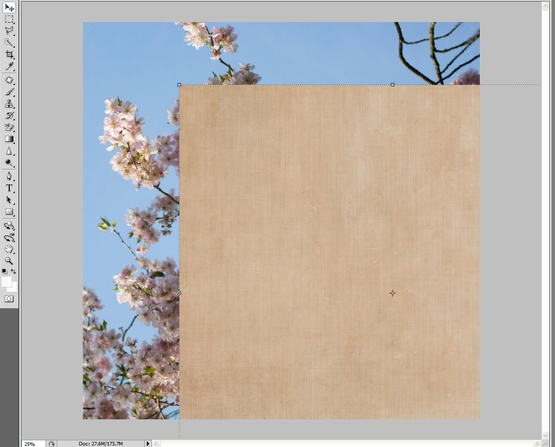 Basic texture tutorial baditri Gallery