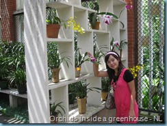 Orchid Garden (13)