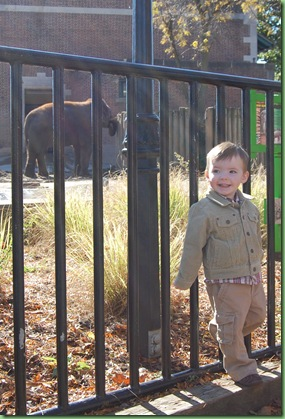 zoo trip 084
