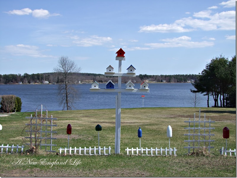 Bird houses bay view