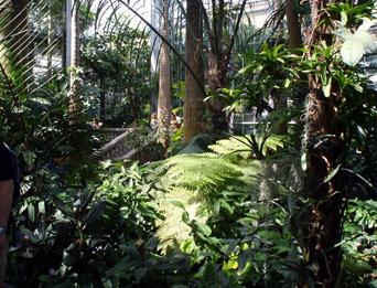 Botancial Gardens 11