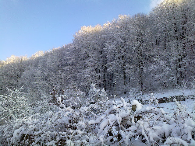 Iarna in satul meu IV