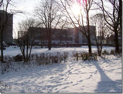 snow_upb_2010