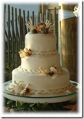 Beach Themed Wedding Cakes with Braids, Shells, and Coral