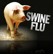 Swine-Flu-Deaths-Spur-Global-E-751dcc4818e75decedeca4ed23c5f554-dv-swine-flu