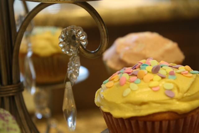 Cupcakes 052