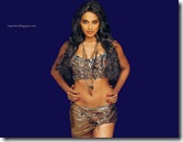 Bipasha-Basu-Wallpapers-8
