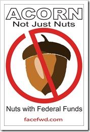 acorn-nuts