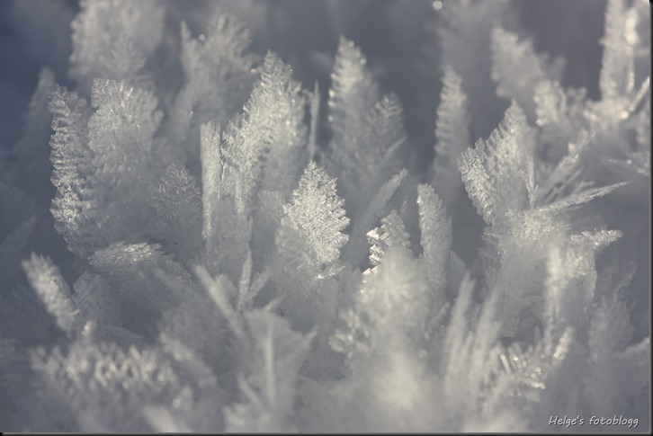 frost04_filtered