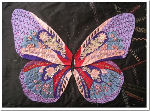 Butterfly Wing 12