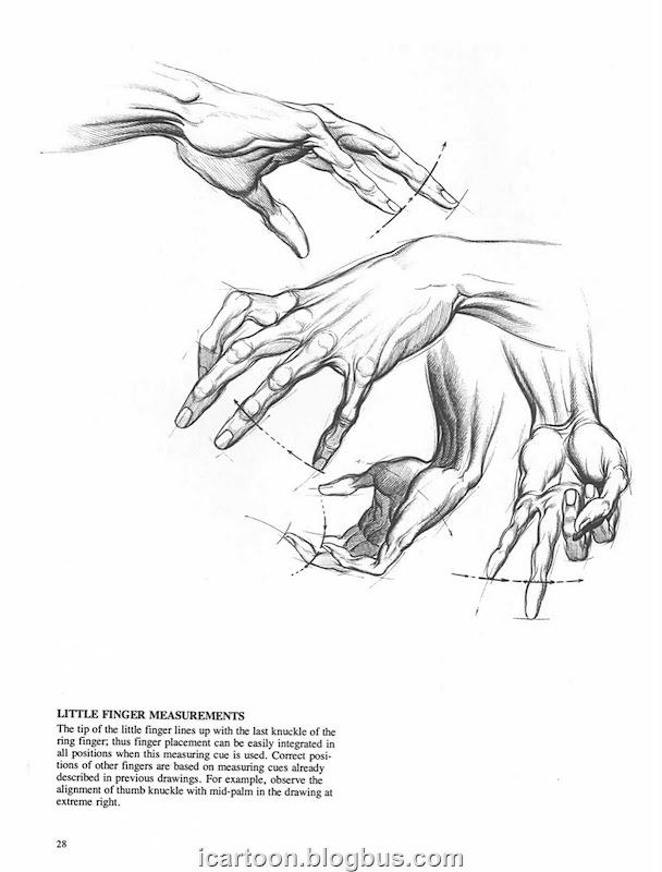 手部结构01