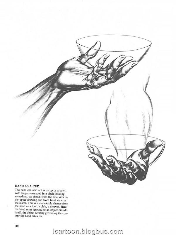 手部结构03