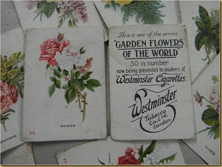 Westminster cards | Cigarette card | Vintage Cigarette sign