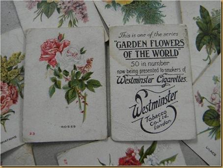 Westminster cards | Cigarette card | Vintage Cigarette sign