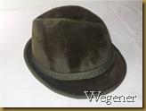Topi Fedora Wegener hijau - kanan