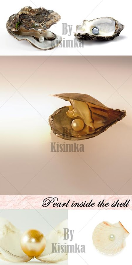 Stock Photo: Pearl inside the shell